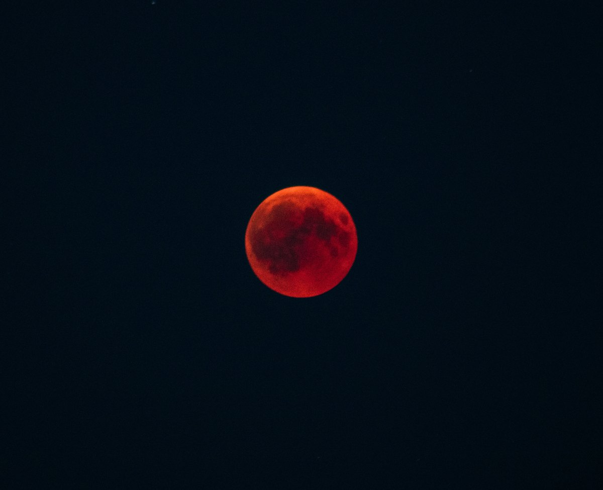 Hanging Out Under a Blood Moon